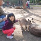 Wildlife Currumbin Sanctuary 33