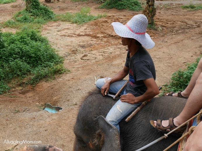 Elephant trekking Krabi 006