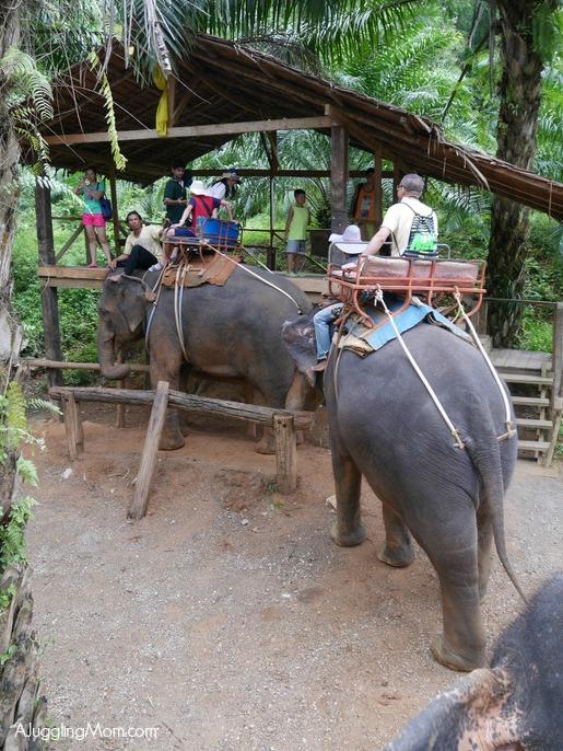 Elephant trekking Krabi 007
