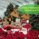 Christmas Wonderland 00