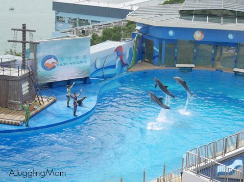 Ocean Park 12