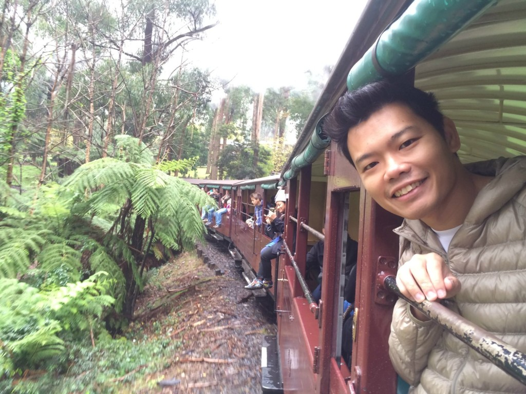 Puffing Billy 15